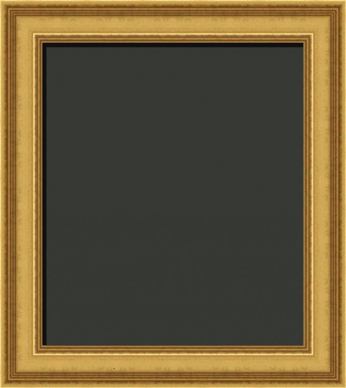 Gold Frames   Gold Picture Frames   Art Gallery Frames