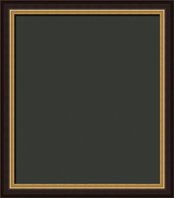 Garrick Federal Style Black and Gold Art Frame