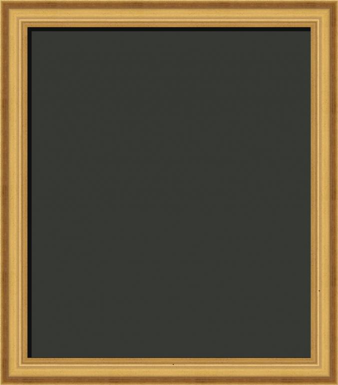 Princeton Federal Style Gold Art Frame